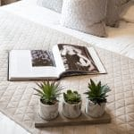 Plants and Open Book on Bed