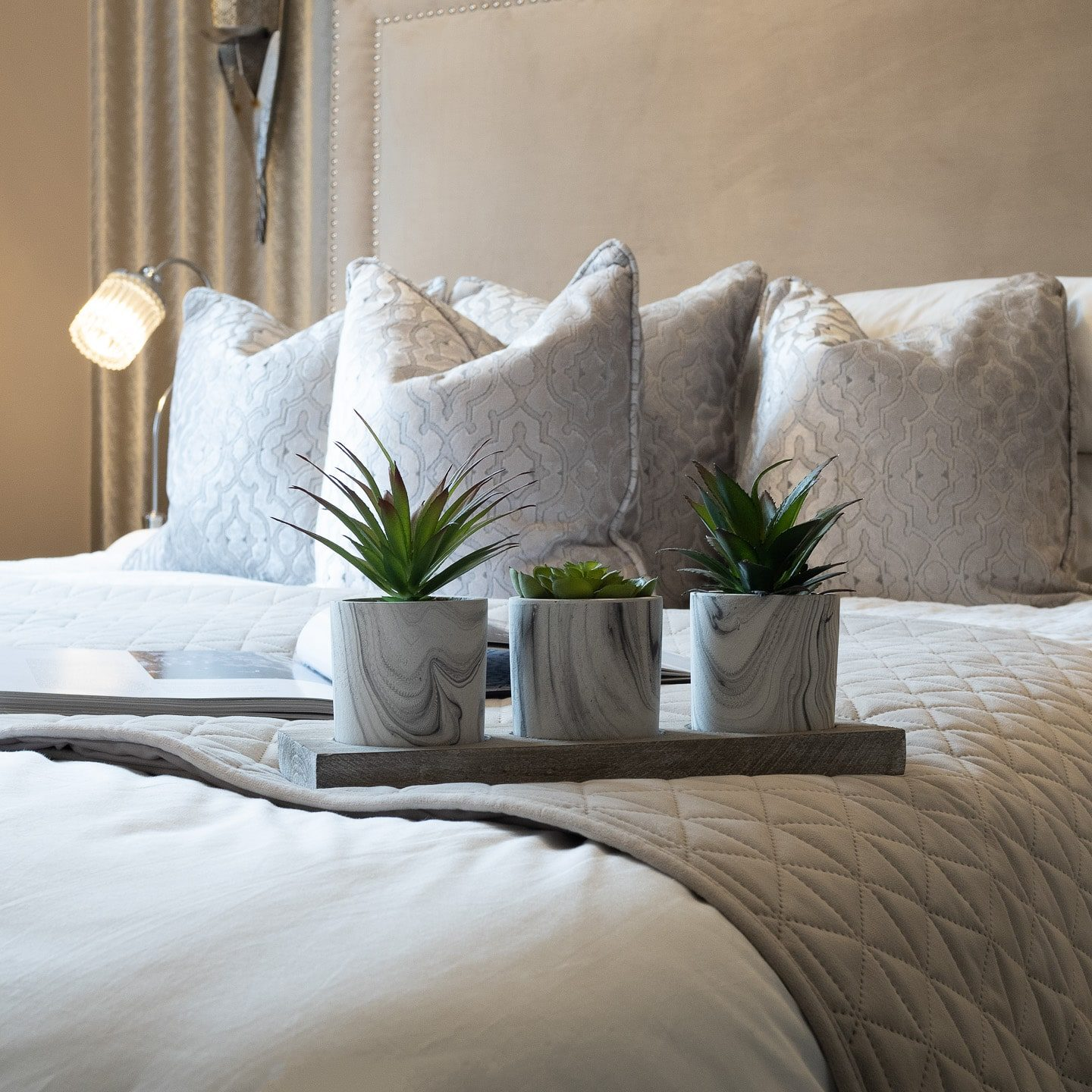 Plants on Bed